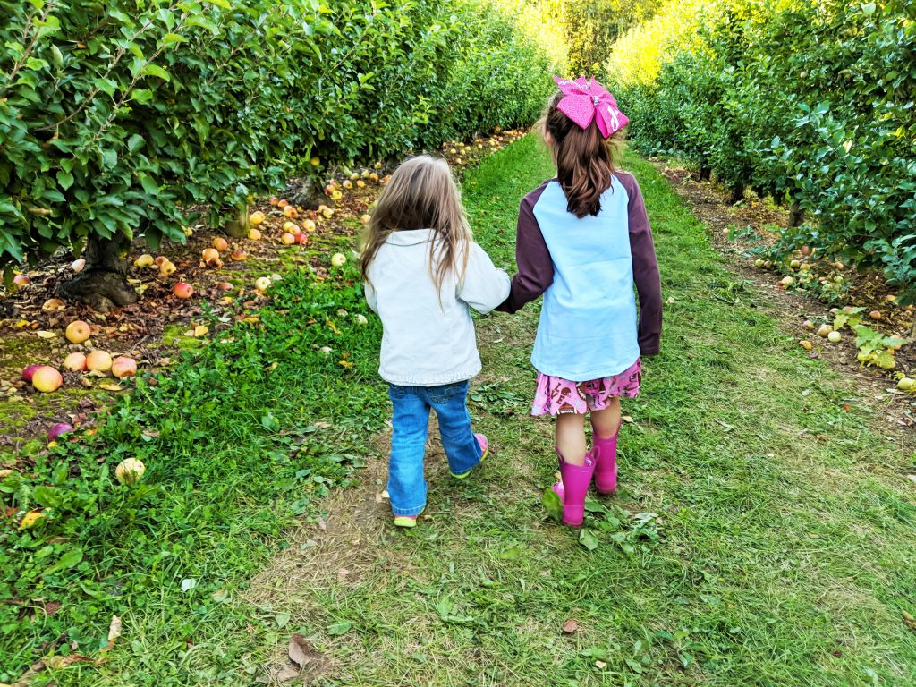 Two sisters holding hands walking through an apple orchard with apples everywhere - best friends